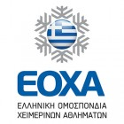 Hellenic-Winter-Sports-Federation